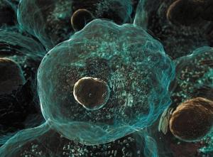 Фактор некроза опухоли альфа