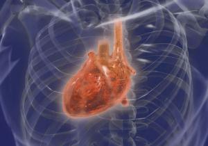 метастазы в сердце