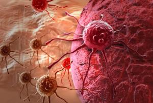 Деление раковых клеток: как происходит?