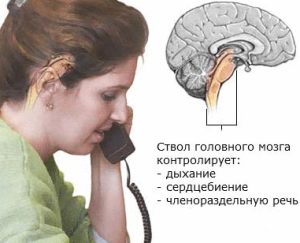 Опухоль ствола мозга: причины, симптомы, лечение, прогноз