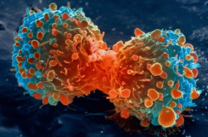 От чего бывает рак?