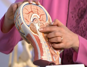 Признаки опухоли мозга у взрослых