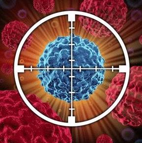Что убивает раковые клетки?